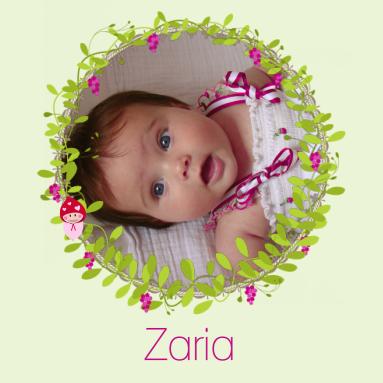 Geboortekaartje voor een meisje met een kabouter en foto - Kantoor voor een klein meisje ...